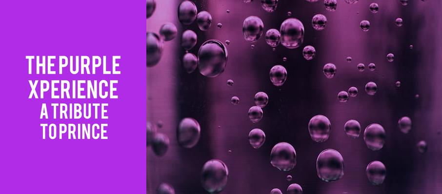 The Purple Xperience - A Tribute To Prince at Arcada Theater
